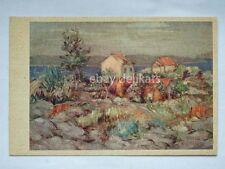 CROAZIA Cata Dujšin Jutro old postcard AK