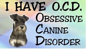 BORZOI Show Off Dog Car Sticker By Starprint