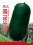 Vegetable-Garden-Retail-package thumbnail 136