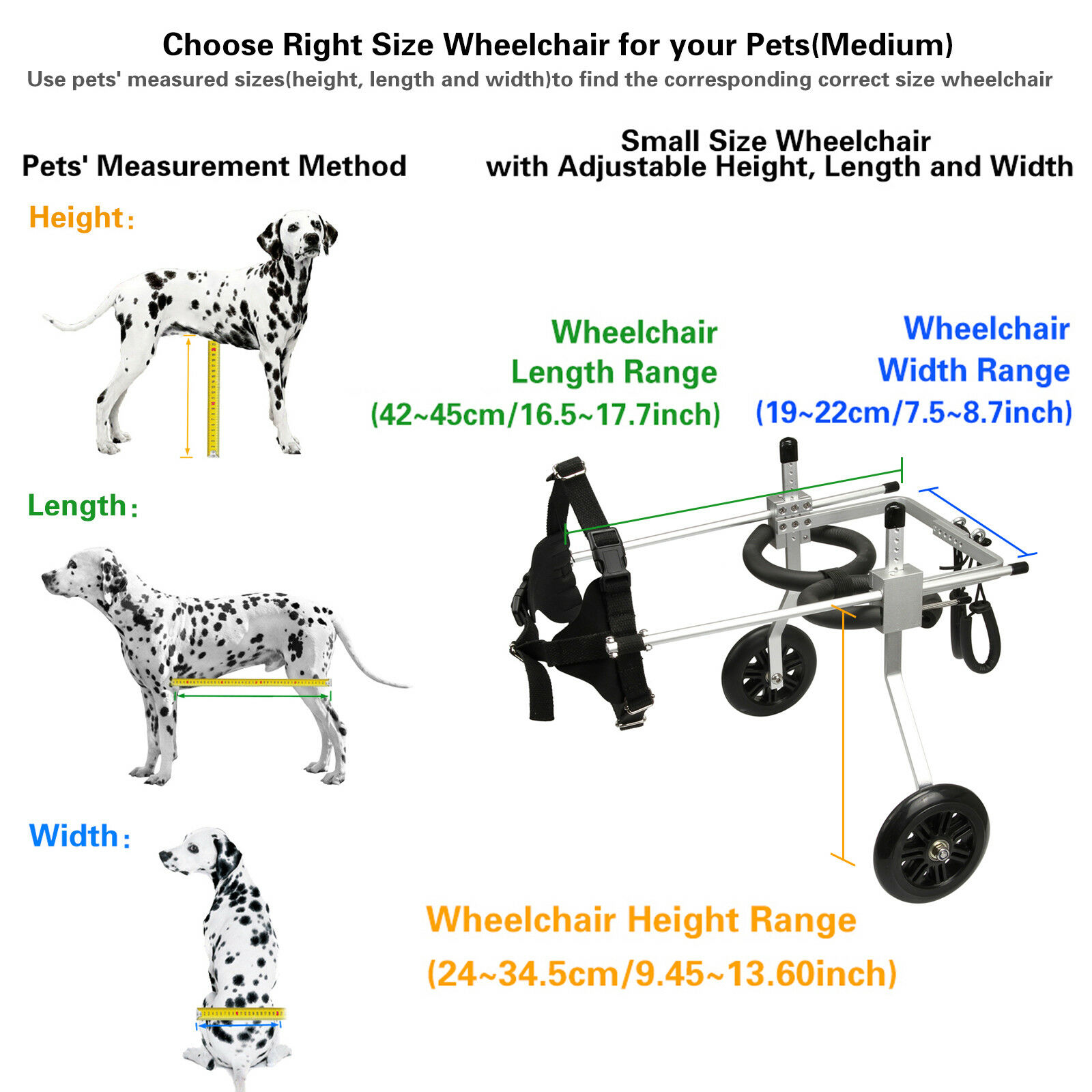 AnmasBox New Adjustable MEDIUM 2-Wheel Pet Wheelchair Dog & Cat Handicapped Tool
