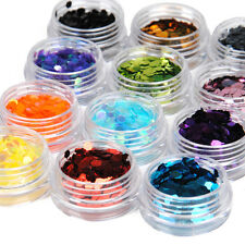12 Big Hexagon Glitter Nail Art Deco Kit Acrylic UV Powder Dust Polish Deco Sets