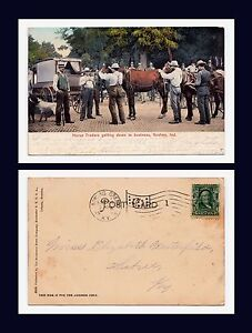 INDIANA-GOSHEN-HORSE-TRADERS-TO-MISS-ELIZABETH-WESTERFIELD-KENTUCKY-1906