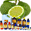 3ml-Essential-Oils-Many-Different-Oils-To-Choose-From-Buy-3-Get-1-Free thumbnail 9