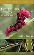 Princeton Field Guides: Caterpillars of Eastern North America : A Guide to Identification and Natural History by David L. Wagner (2005, Paperback)