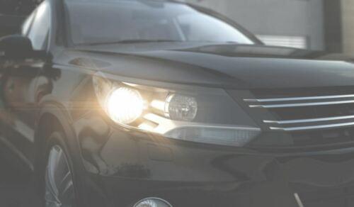 Osram Ultra Life Long Life Car Bulbs with 4-Year Guarantee HEADLIGHT /& SIGNAL