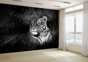 Bengal-Tiger-in-Grass-Wallpaper-Mural-Photo-14751945-budget-paper