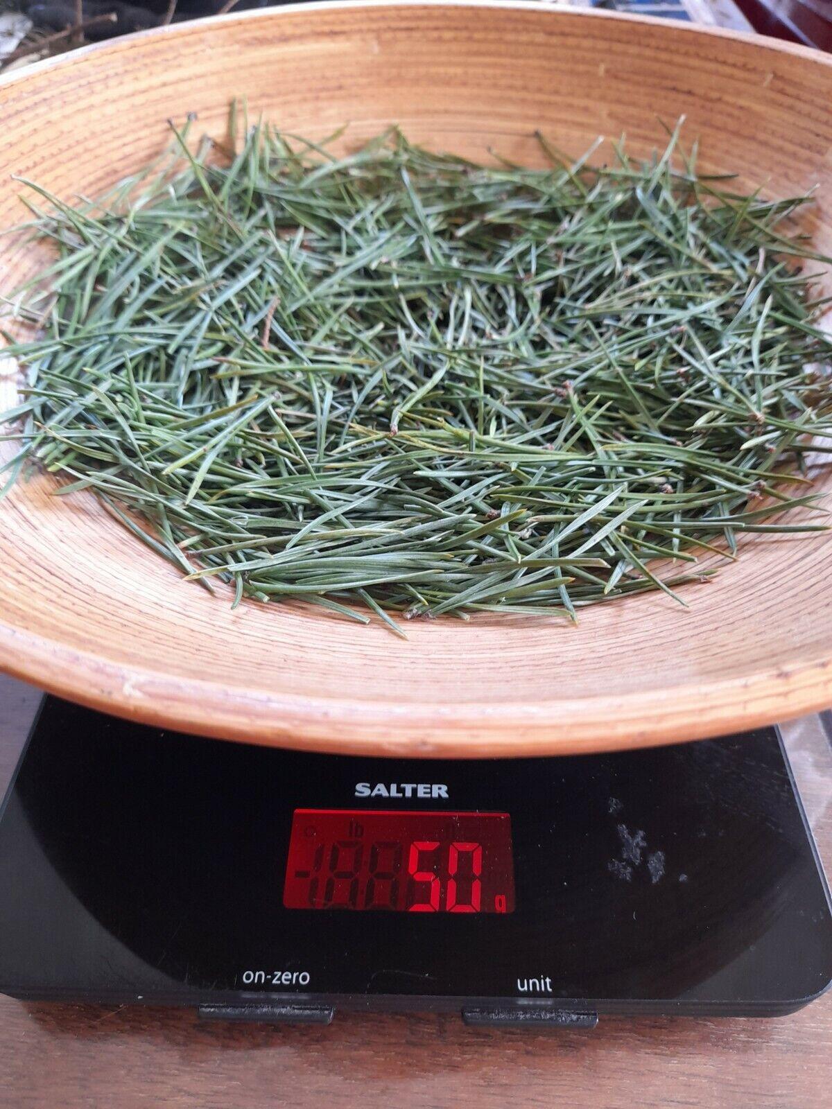 Organic Fresh Scots Pine Needles Loose, Suramin Herbal Botanical Multi Use 50g