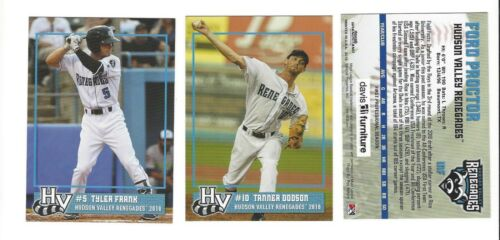 2018 HUDSON VALLEY RENEGADES COMPLETE TEAM SET TAMPA BAY W// TYLER FRANK RC