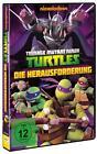 Teenage Mutant Ninja Turtles: The Gauntlet (2013)