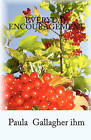 Everyday Encouragement by Paula Gallagher Ihm (Paperback / softback, 2010)