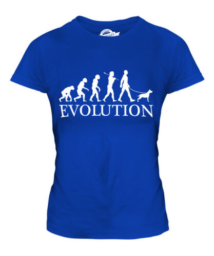 STAFFORDSHIRE TERRIER EVOLUTION OF MAN LADIES T-SHIRT TEE TOP DOG GIFT WALKER