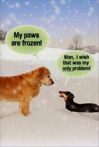 image is loading nobleworks paws are frozen box of 12 funny