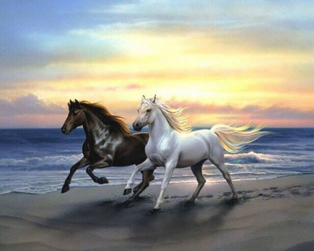 Couple Horse DIY 5D Embroidery Diamant Sticker Cross Stitch Painting Dekor ,~