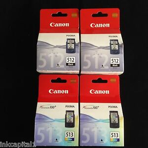 2-x-PG-512-amp-2-x-CL-513-originale-OEM-Cartucce-Inkjet-Per-Canon-MP480-MP-480