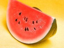Watermelon Red Food Vegetable Fruit World Refrigerator 3D Fridge Magnet