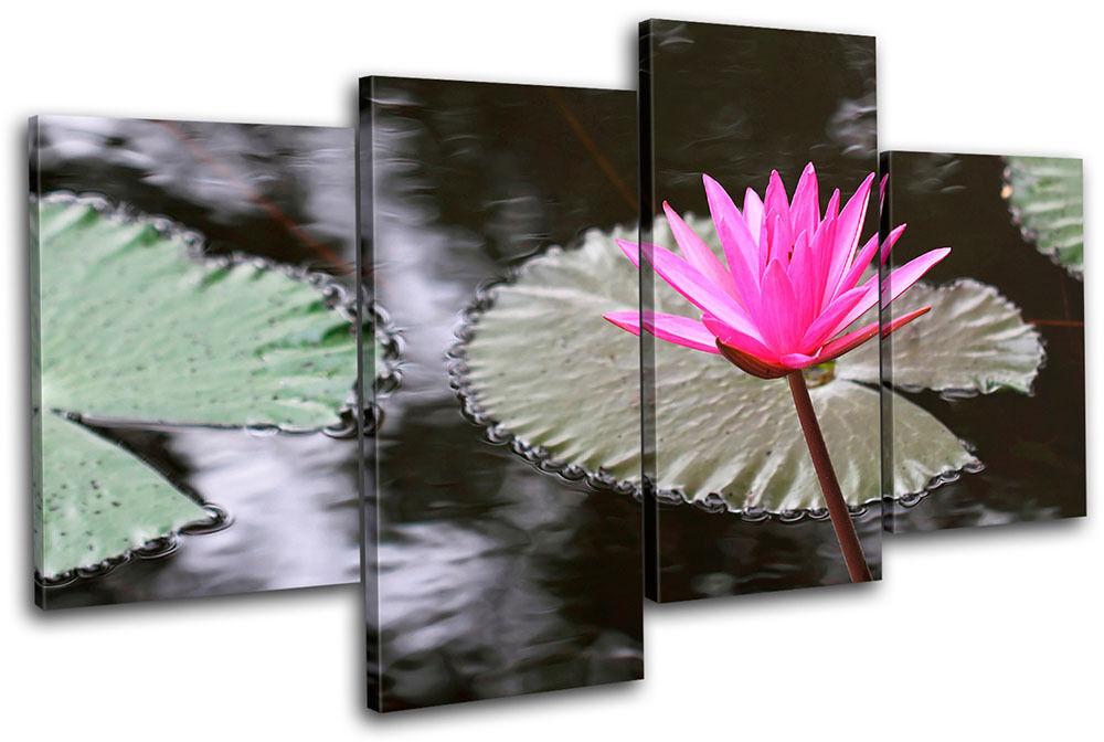 Water Lily Flowers Floral MULTI MULTI MULTI TELA parete arte foto stampa c39272