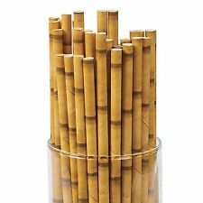 24 Pack of Bamboo Printed Paper Straws - Luau and Tiki Party Cocktail Drinks