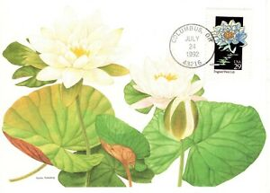 1992-COMMERATIVE-WILDFLOWERS-POSTCARD-FLEETWOOD-CACHET-amp-STORY-UNADDRESSED-FDC