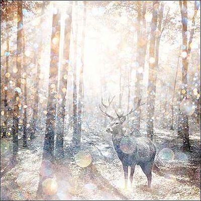 Beau Jakobs Mystical Forest I Keilrahmen-Bild Leinwand Wald Hirsch Geweih Kult