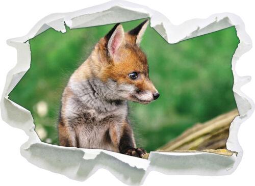 junger Fuchs 3D-Look Papier Wandtattoo Aufkleber-Sticker