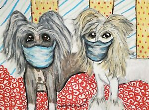 Chinese Crested at Starbarks Art Print 8 x 10 Collectible Artist Signed by KSams