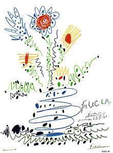 PICASSO-LITHOGRAPH-1964-w-COA-Pablo-Picasso-U-C-L-A-unique-Picasso-Rare-Art