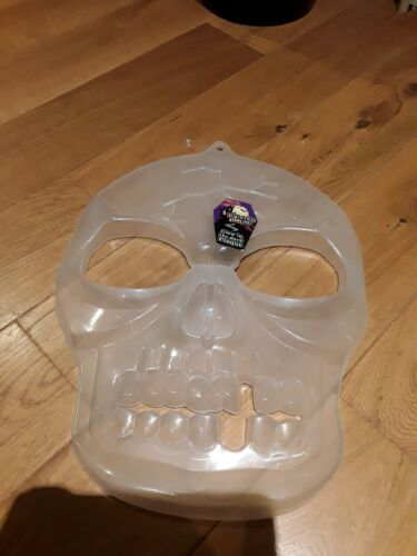 Glow In The Dark Skull Plaque Halloween