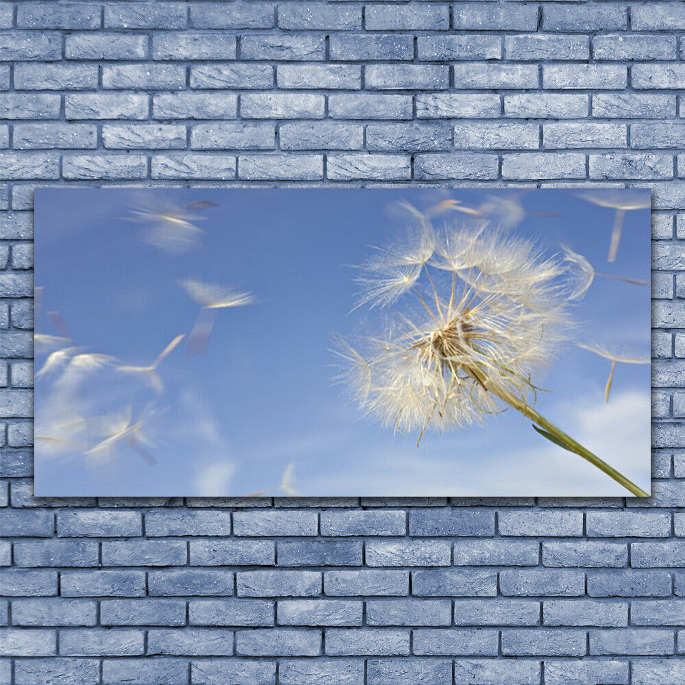 Print on Glass Wall art 140x70 Picture Image Dandelion Floral