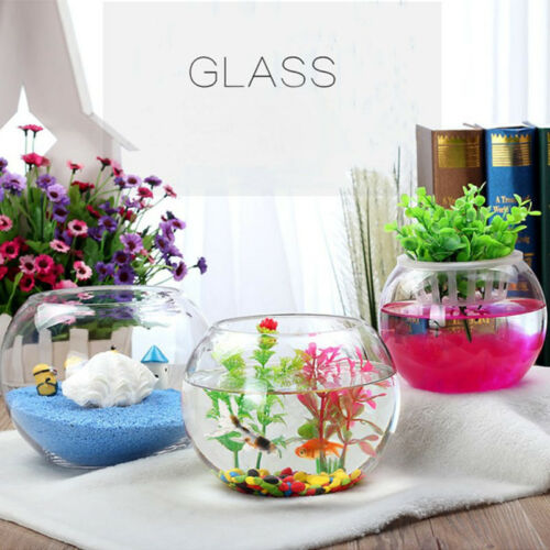 Round Clear Glass Vase Fish Tank Ball Bowl Flower Planter Terrarium