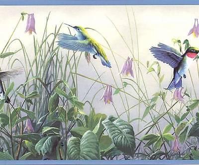 Wallpaper Border Floral Hummingbirds Blue Edge Flowers Green Purple Off White