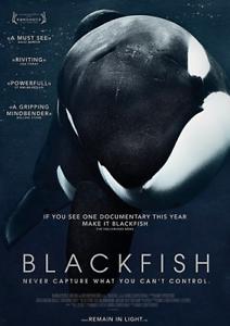 BLACKFISH-film-poster
