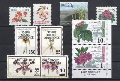 Orchids 957267 Flowers Small Lot World Street Price Nature