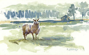 Sheep-POSTCARD-Farm-Animal-Painting-Art-Steve-Greaves-Print-Landscape-Acrylic