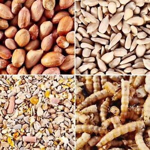 Wild Bird Food Bulk No Mess Mix/Whole Peanuts/Sunflower Hearts/Dried Mealworms