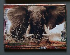 Peter Beard Fridge Photo Magnet 9x7cm, Large bull elephant, Tsavo 1965 Tusker