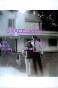 ELVIS-PRESLEY-PRISCILLA-W-BABY-LISA-MARIE-COLLIE-DOG-GRACELAND-039-68-PHOTO-CANDID