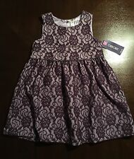 Pretty Little Girls Toddlers Dress. Cherokee Target, Size 5T. Floral Lace Purple