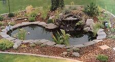 NEW WATER GARDEN FOUNTAIN  KOI POND KIT LINER & 620 GPH PUMP 13 x 15 + Lilies