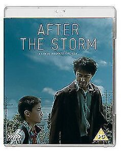After-The-Storm-Blu-Ray-Nuovo-Blu-Ray-FCD1596