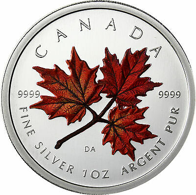 Kanada 5 Dollar 2001 stgl. Maple Leaf in Farbe
