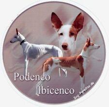 Design  Aufkleber Podenco Ibicenco / Balearen-Hund Podengo 15cm Autoaufkleber