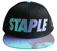 Staple World Renown Pigeon Brand Men's Aqua Snapback Hat