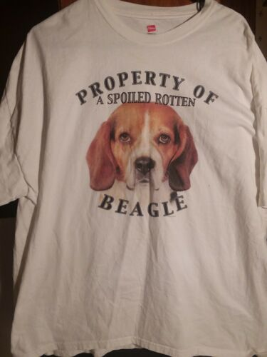 Property of a spoiled  rotten beagle 2xl t shirt