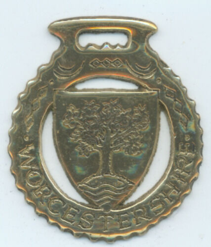 N716 WORCESTERSHIRE    Horse brass