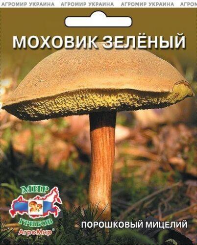 Xerocomus subtomentosus Mushroom Mycelium Spores Spawn Dried Seeds