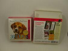 365 Dogs Desk Calendar 2012 Boxed Color Photos Health & care tips breed facts