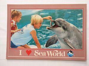 Rare-Dolphin-Feeding-Sea-World-San-Diego-California-Old-Vintage-Postcard