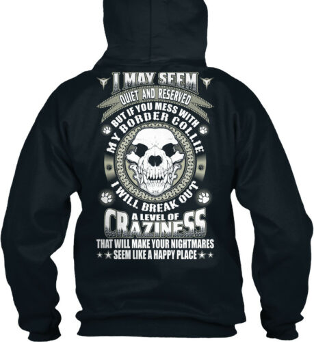 I May Seem Quiet And Standard College Hoodie Dont Mess With Border Collie