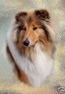 Rough-Collie-A6-Blank-Card-Design-No-6-By-Starprint-Auto-combined-postage