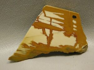Stone-Slab-Natural-Rough-Rock-Owyhee-Picture-Jasper-Cabbing-Lapidary-7